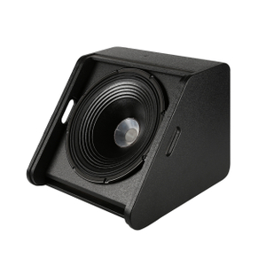 "BW-15M 15"" coaxial monitor speaker"
